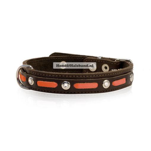 Halsband Sportif Orange