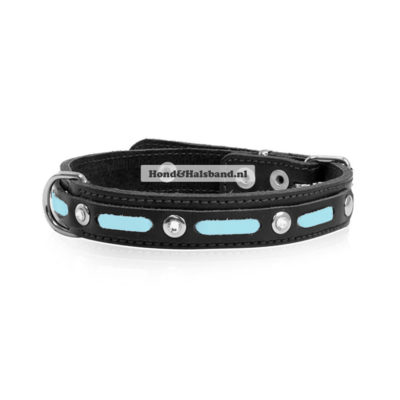 Halsband Sportif Blue
